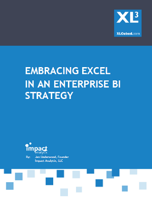 Excel in Enterprise BI White Paper